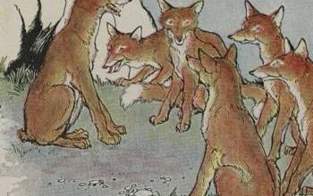 The Fox Without A Tail