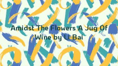 Amidst The Flowers A Jug Of Wine by Li Bai