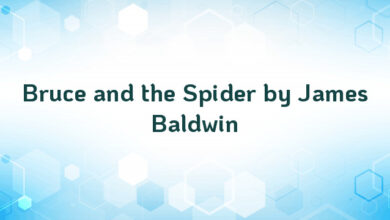 Bruce and the Spider by James Baldwin