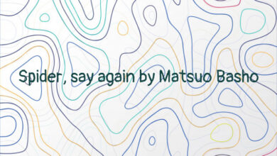 Spider, say again by Matsuo Basho
