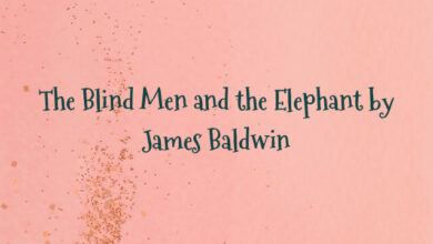 The Blind Men and the Elephant by James Baldwin
