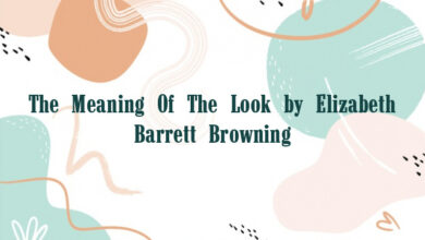 The Meaning Of The Look by Elizabeth Barrett Browning
