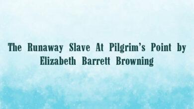 The Runaway Slave At Pilgrim's Point by Elizabeth Barrett Browning
