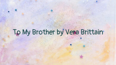 To My Brother by Vera Brittain