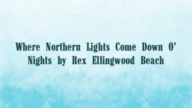 Where Northern Lights Come Down O' Nights by Rex Ellingwood Beach