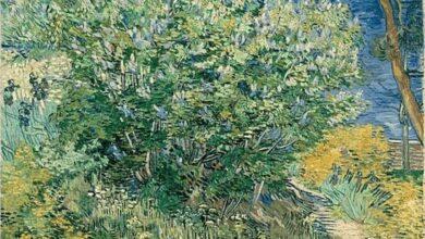 Vincent van Gogh, Lilac Bush, 1889