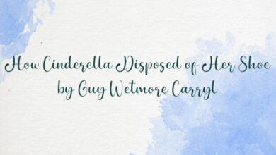 How Cinderella Disposed of Her Shoe by Guy Wetmore Carryl