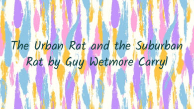 The Urban Rat and the Suburban Rat by Guy Wetmore Carryl