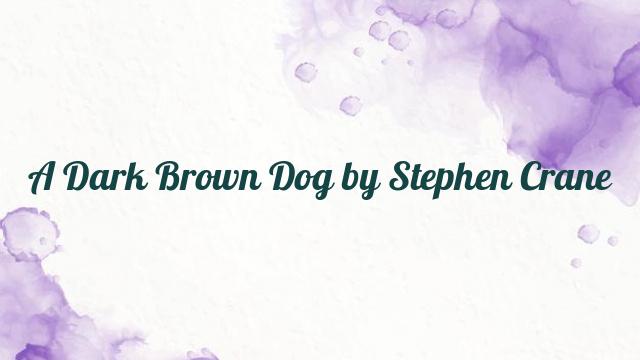 A Dark Brown Dog by Stephen Crane