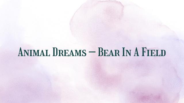 Animal Dreams – Bear In A Field