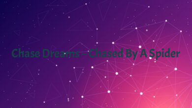 Chase Dreams – Chased By A Spider