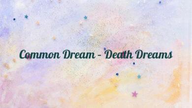 Common Dream – Death Dreams