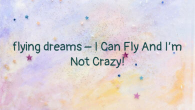 flying dreams – I Can Fly And I'm Not Crazy!