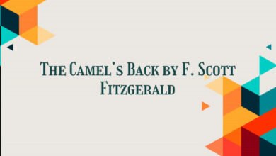 The Camel's Back by F. Scott Fitzgerald