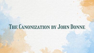 The Canonization by John Donne