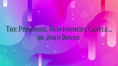 The Primrose, Montgomery Castle… by John Donne
