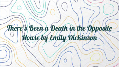 There's Been a Death in the Opposite House by Emily Dickinson